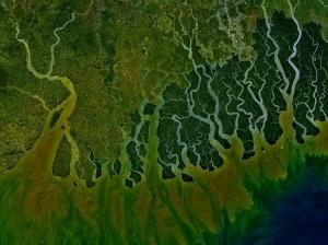 Photo: Ganges Delta, NASA | Wikimedia Commons